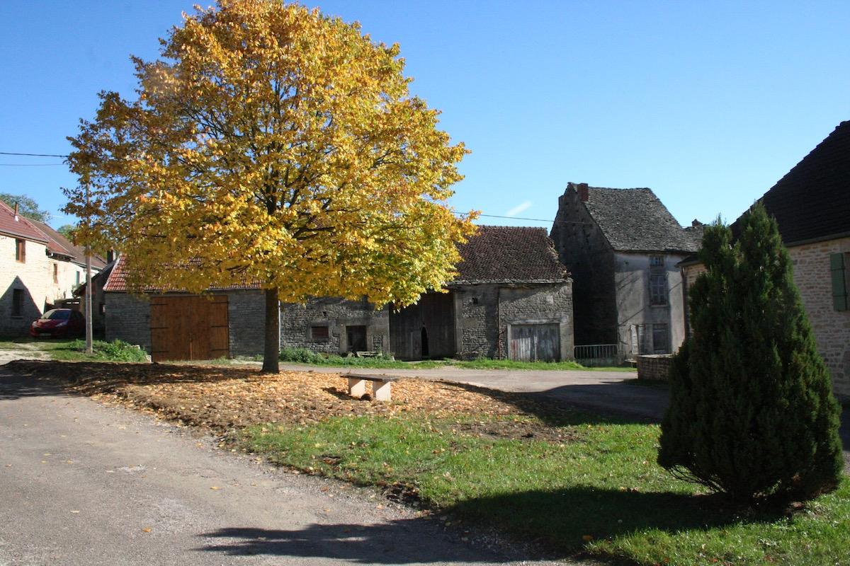 Ré-engazonnement de place de l'église - Savigny-sous-Mâlain